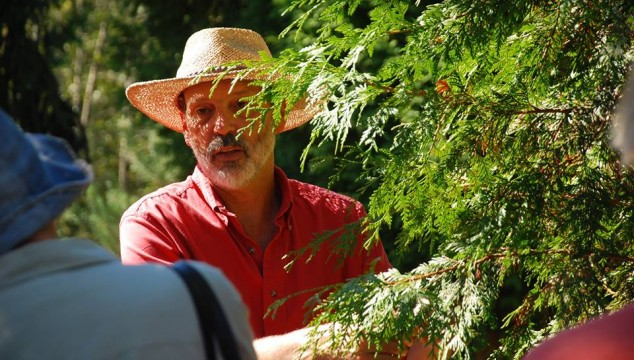Tree ID and Garden Walk – September 20th