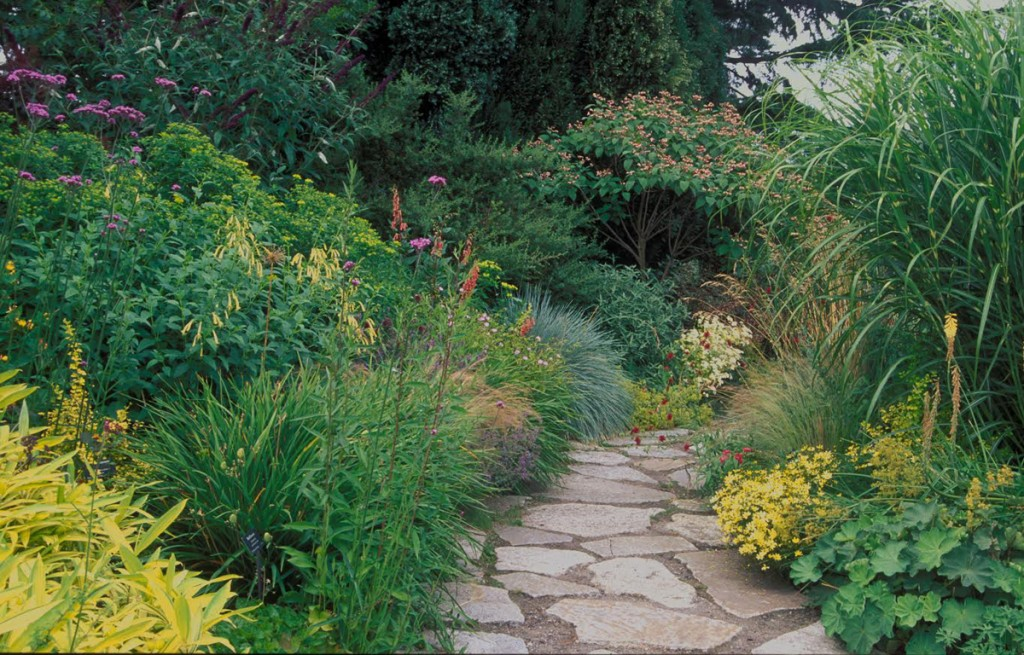 Planning your resilient garden